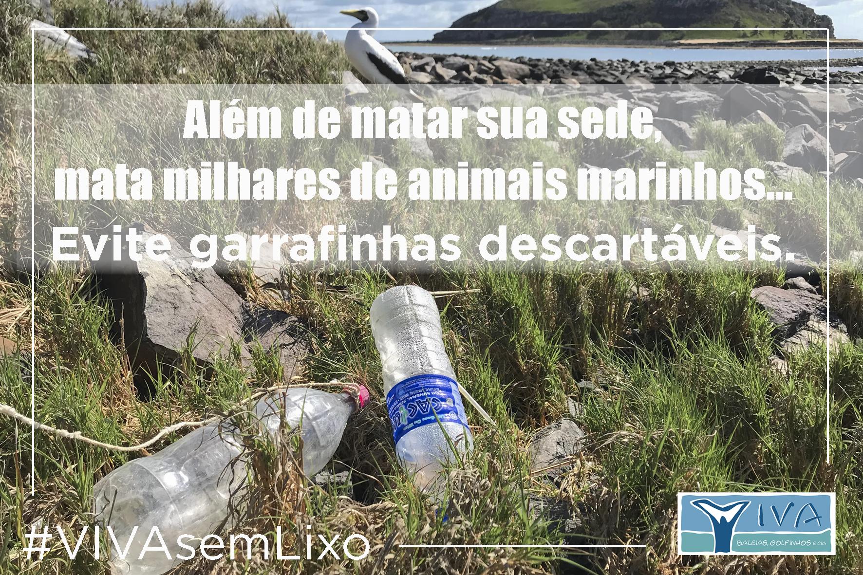 Mata milhares de animais marinhos Abrolhos 10 15