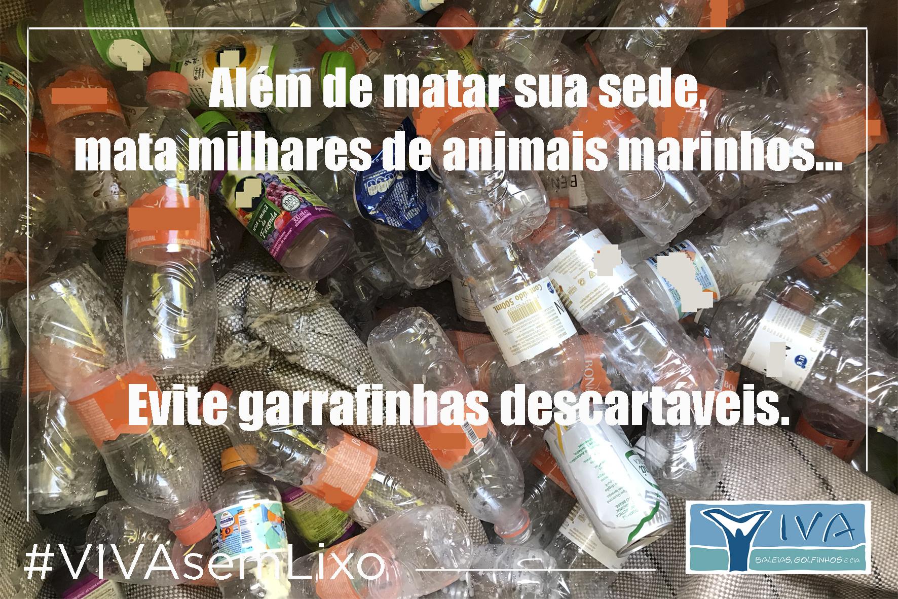 Mata milhares de animais marinhos garrafinhas EVITE 2 10 15