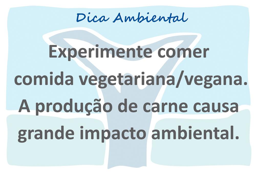 novo logo VIVA template açao ambiental X 10 28