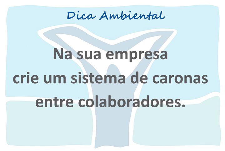 novo logo VIVA template açao ambiental X 11 7