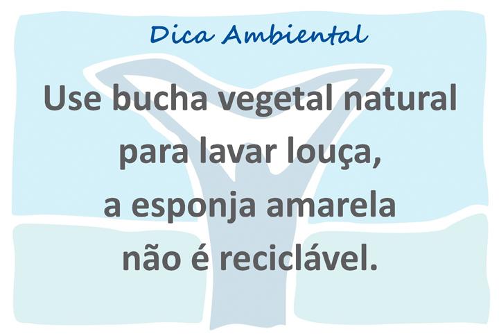 novo logo VIVA template açao ambiental x 12 10