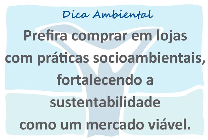 novo logo VIVA template açao ambiental x 12 18