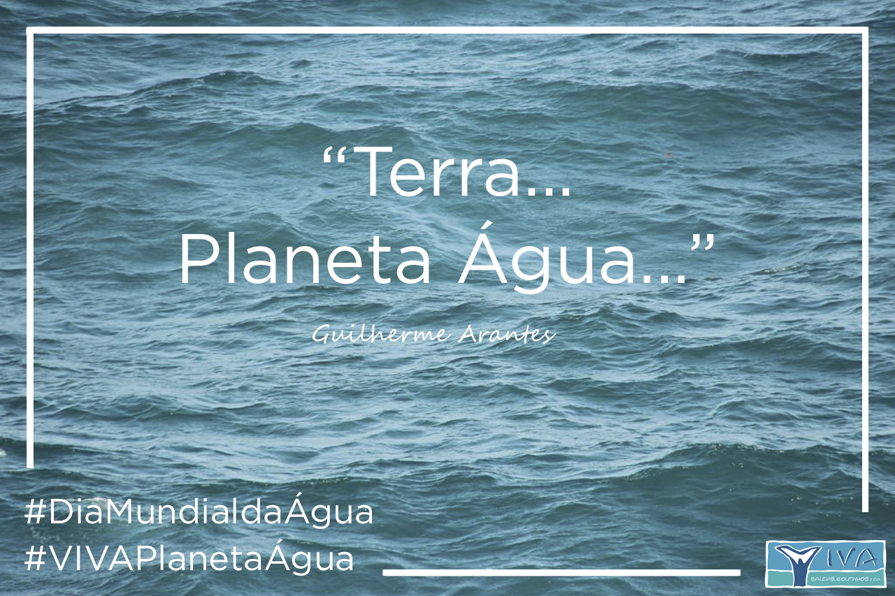 Oceano Limpo Terra Planeta Agua 10 15